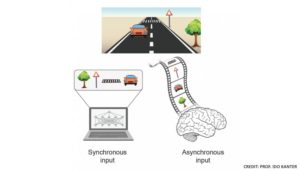 The Brain Inspires a New Type of Artificial Intelligence